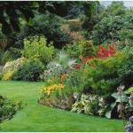 4 Simple Ways to Improve Garden Soil