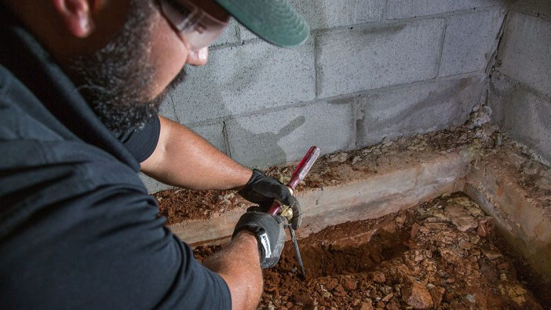 What to Expect From a Termite Inspection
